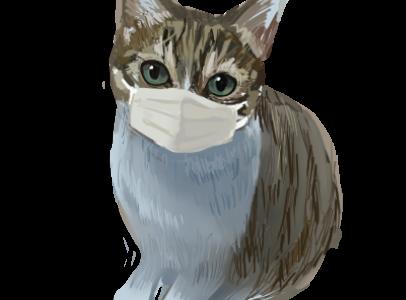 マスクをした猫のイラスト