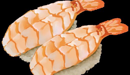 海老(ボイル海老)のお寿司のイラスト(お皿無しバージョン)